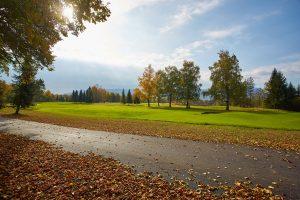Mapri Asfaltiranje ozke ceste Golf Bled